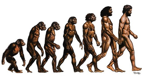 Sumber : http://resources2.news.com.au/images/2012/10/19/1226499/217734-evolution-of-man.jpg