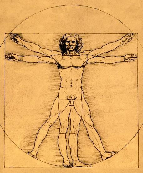 Sumber : http://2.bp.blogspot.com/-PC467pX2xwY/UZ932vKmmlI/AAAAAAAABSk/XPMlTvZ0ZJU/s1600/Proportions-of-the-Human-Figure,-Leonardo-da-Vinci,-1485-149.jpg